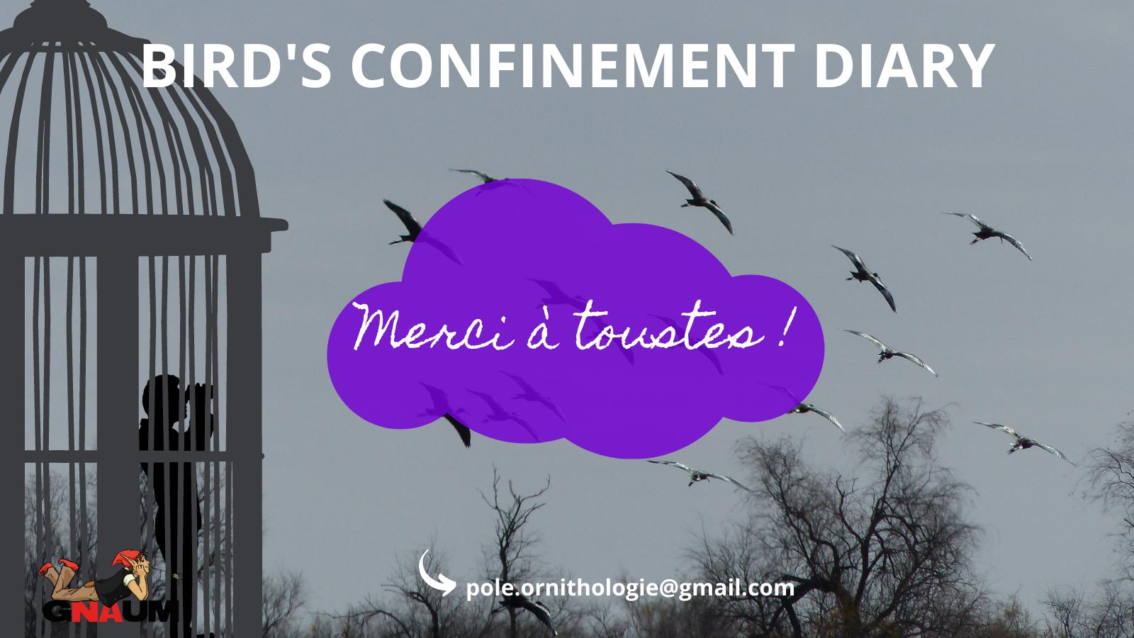 Bird's Confinement Diary