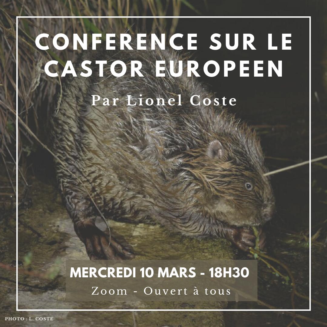 Conférence - Le castor européen